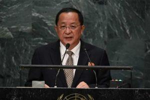 Xuất thân danh giá của ngoại trưởng Triều Tiên