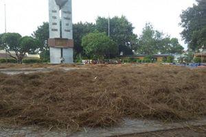 Khu tượng đài chiến thắng Ngọc Hồi biến thành bãi phơi rơm
