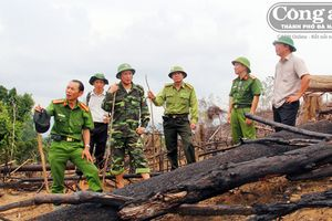 Về bài viết 'Ai đứng sau vụ phá rừng Tiên Lãnh?': Xem xét rút hồ sơ lên CA tỉnh điều tra