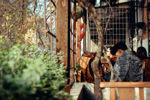 Điểm tâm 25/9: 7 quán cà phê có view chụp ảnh đẹp nhất Hà Nội