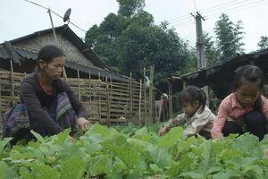 Bốn mẹ con người Mông ở vùng miền núi Tây Bắc chật vật chuyện cơm, áo