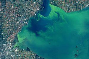 Sau nửa thế kỷ, hồ nước ở Mỹ bất ngờ đổi màu xanh ma mị