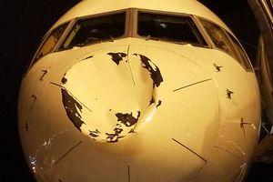 Máy bay bị đâm móp đầu vì va chạm với… một chú chim