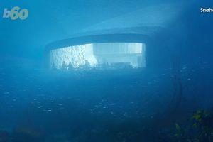 Độc đáo nhà hàng dưới biển đầu tiên ở châu Âu