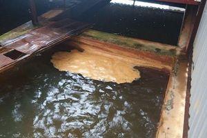 Xét nghiệm nguồn nước sạch nghi bị nhiễm Asen nặng ở KĐT Tân Tây Đô