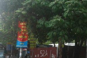 Hà Nội: 'Bến cóc' ngang nhiên hoạt động, thách thức pháp luật