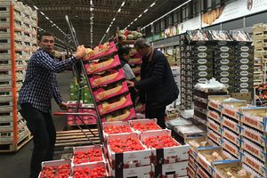 Ghé thăm Rungis - chợ đầu mối lớn nhất của Pháp