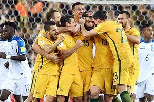 Đã xác định 31 đội dự Vòng chung kết World Cup 2018