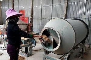 Nhà nông Con Cuông tự dựng xưởng sản xuất thức ăn chăn nuôi