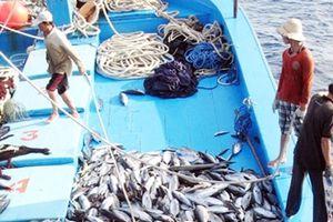Đã đến lúc công khai tàu cá vi phạm để có biện pháp xử lý