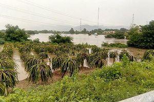 12 hồ chứa nước ở Bình Thuận đồng loạt xả lũ