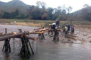Nơi nửa thế kỷ người dân phải dựng cầu tre để đi