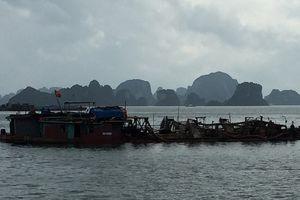 Quảng Ninh: Bắt giữ 5 tàu vận chuyển cát, phụ gia xi măng trái phép
