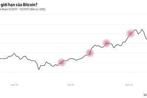 Bitcoin tiếp tục phá mốc giá 8.000 USD, tăng 700% giá trị trong năm