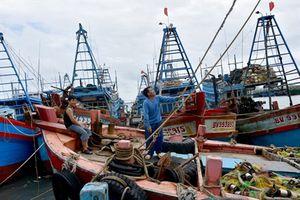 Bà Rịa - Vũng Tàu trước giờ 'G' đón bão Tembin, sẽ sơ tán khoảng 160.000 dân