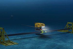Cáp quang SMW-3 bị lỗi tại vùng biển gần Trung Quốc