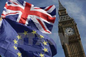 Anh không tổ chức trưng cầu ý dân lần hai về Brexit
