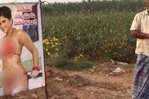 Nhà nông dùng hình thánh nữ 'phim người lớn' để đuổi trộm