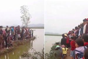 Bác thông tin 'cá thần' xuất hiện ở Nghệ An khiến hàng trăm người kéo đến xem