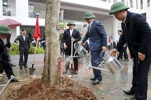 Chủ tịch Hà Nội phát động Tết trồng cây ở quận Hà Đông
