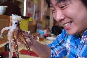 15 điều tuyệt vời chỉ có ở Nhật Bản