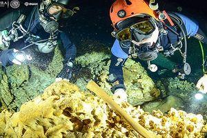 Kinh ngạc loạt hiện vật nguyên vẹn từ nền văn minh Maya vừa được khai quật