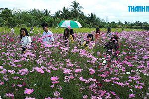 Có một vườn hoa dành cho bạn trẻ ở Tiền Giang