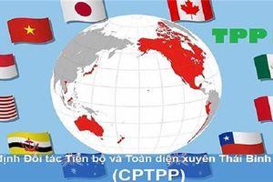 Toàn văn Hiệp định Đối tác Toàn diện và Tiến bộ xuyên Thái Bình Dương - CPTPP