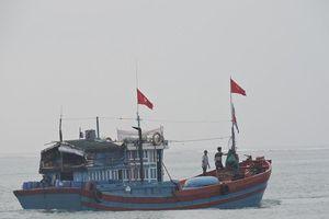 Hàng chục tàu cá của ngư dân Lý Sơn đồng loạt ra khơi