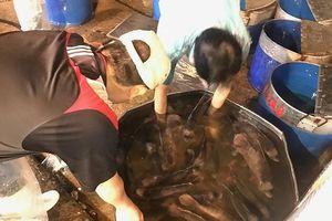 Gần 40 tấn cá lóc 'đổ bộ' Sài Gòn trước ngày vía thần tài
