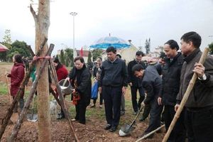 Thị xã Sơn Tây - Hà Nội: Trồng 30.000 cây xanh trong năm 2018