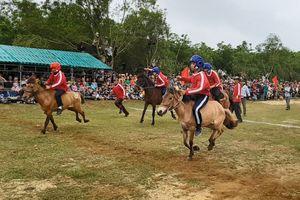 Người dân đứng ngồi, leo cây xem ngựa thồ tung vó trên đường đua làng