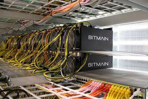 Hãng đào bitcoin Trung Quốc kiếm tiền ngang Nvidia