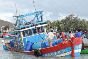 Chìm tàu cá, 11 ngư dân thoát chết ở Quảng Ngãi