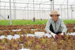 Ứng dụng công nghệ nano trong nông nghiệp