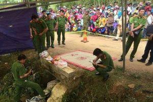Hà Nội: Bắt hai cha con đâm người họ hàng tử vong