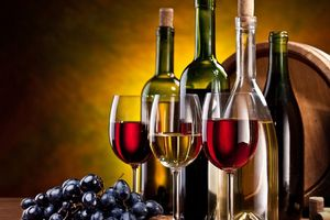 Hưởng lợi CPTPP, Chile chọn Việt Nam là điểm đến của rượu vang