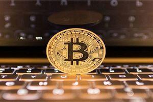 Giá bitcoin hôm nay (25/2): Hãng bán máy 'đào' Trung Quốc có doanh thu ngang ngửa Vingroup