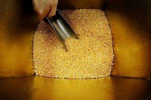 Dự trữ vàng của Nga vượt Trung Quốc