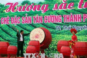 Lễ hội 'Hương sắc Trà xuân- vùng chè đặc sản Tân Cương'