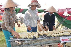 Quảng Nam: 7.000 trái bắp phục vụ tại Ngày hội bắp nếp Cẩm Nam 2018