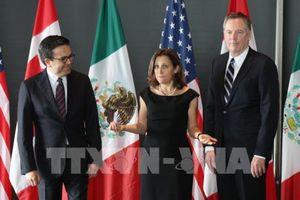Tái đàm phán NAFTA đã đạt trên 50% tiến độ