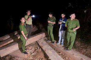 Dùng 5 công nông chở gỗ khai thác trái phép trong đêm
