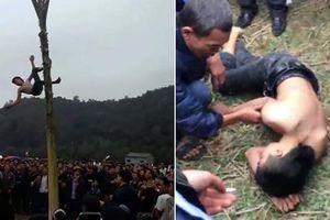 Nhóm người tổ chức trèo cây chuối 'lấy lộc' đầu năm có thể bị xử phạt