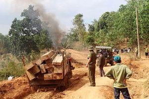 'Lâm tặc' vứt 5 xe công nông gỗ lậu tháo chạy trong đêm