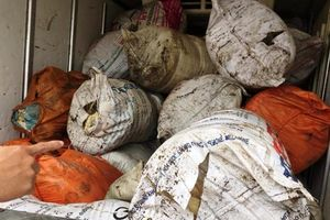 Hà Tĩnh: Bắt xe ô tô tải vận chuyển gần 1 tấn mỡ bò bẩn