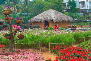 Lễ hội hoa Xuân-điểm đến của những người yêu hoa