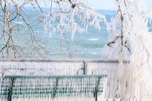 Sân bay Geneva của Thụy Sĩ mở cửa trở lại trong cơn bão tuyết