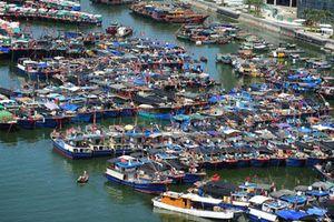 Tàu cá Trung Quốc lộng hành (*): Lật mặt nạ dân quân biển