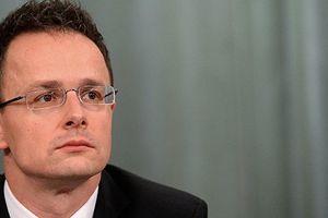 Ngoại trưởng Hungary: Ukraine 'đâm sau lưng' châu Âu